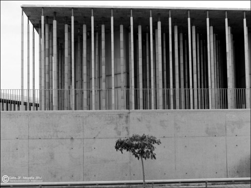 Pabellón de España (Expo 2008) #14