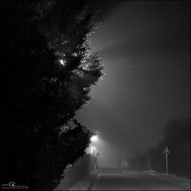 Oculta tras la noche