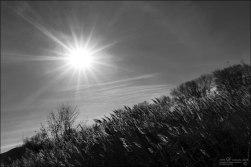 Sol de otoño (II)