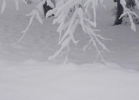 iarna in imagini frumoase 17