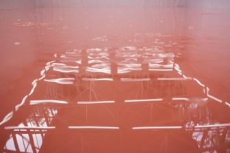 Pamela Rosenkranz: Our Product. Swiss Pavilion the 56th Venice Biennale