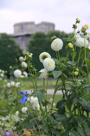 Augarten with Flakturm, (CC) Natalie Merchant, https://www.flickr.com/photos/nataliemarchant/