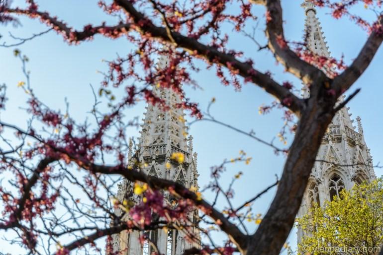 Vienna in spring: Votivchurch