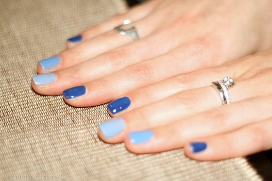 Bluebirds Nail Design 2