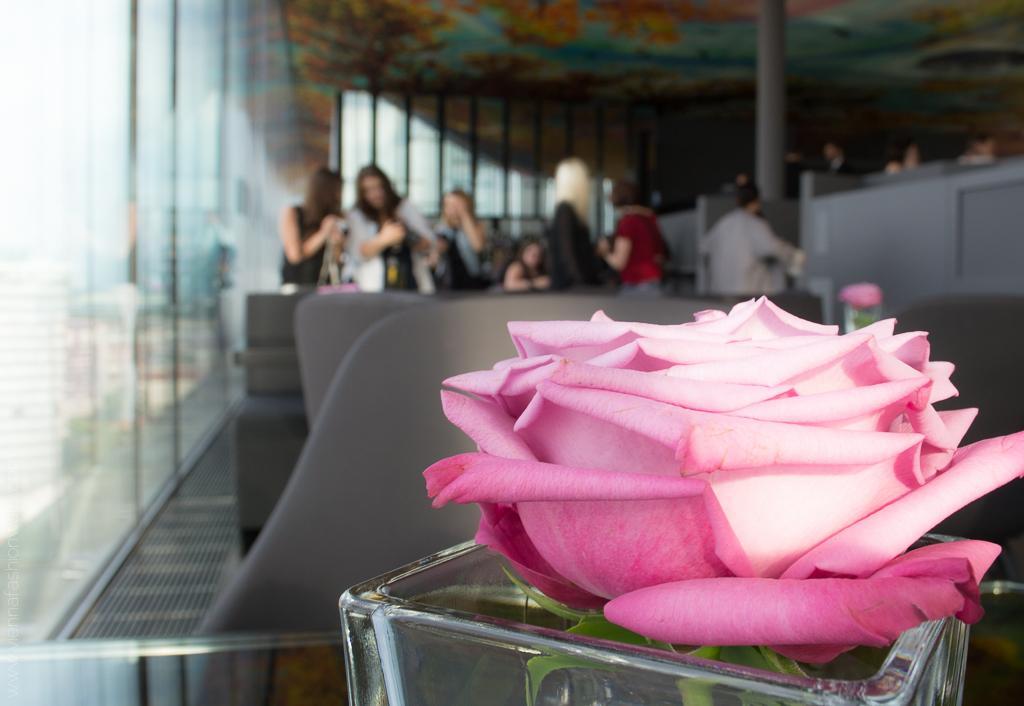 Discover Sofitel Vienna Wedekind Michele Pauty Accorhotels Blog www.viennafashionwaltz (46)