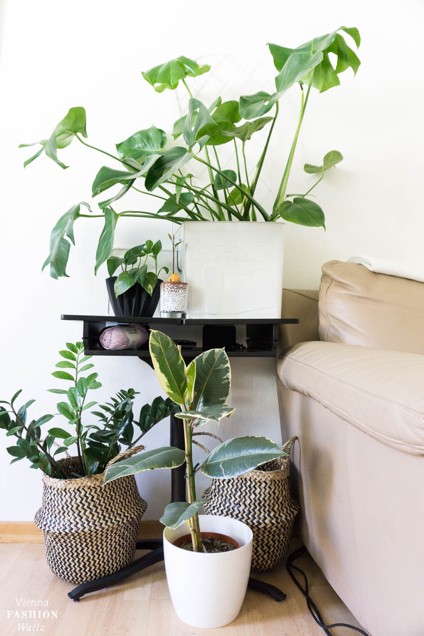 DIY Blumentopf zum Aufhängen | Upcycling Wall Planters, plantshelfie, urbanjunglebloggers, Zimmerpflanzen. Wohnideen, green living, Leben mit Pflanzen, Deko, Urban Jungle Ideen | DIY Indoor Garden Plant Ideas | Grünlilien, Pflanzenwand, hanging plants | Blog Vienna Fashion Waltz