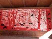 Gallery of animals