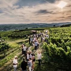 Wien Lifestyle-Tipps für September