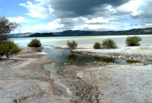 bords du lac de Rotorua