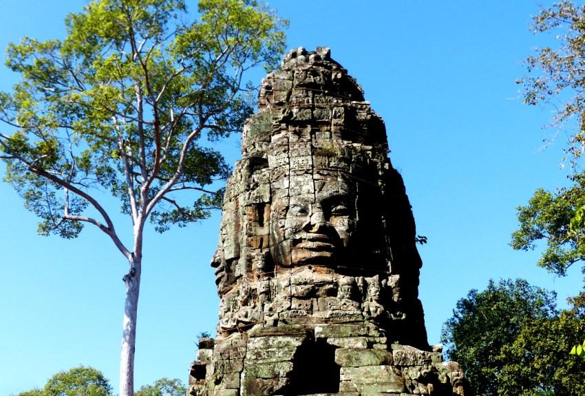 Ta Prohm temple d'Angkor
