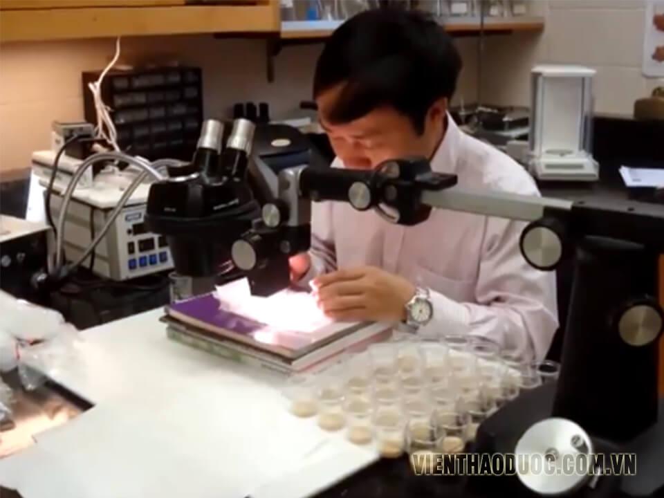 Tiến Sĩ Phạm Văn Nhạ Viện nghiên cứu thảo dược Việt Nam