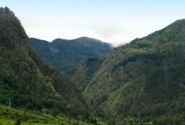 Plan a 10 años para proteger espacios públicos en Cerros Orientales