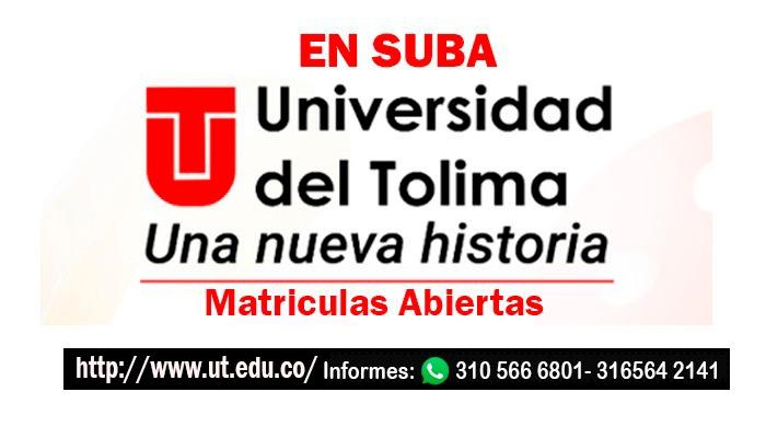 Universidad del Tolima 2