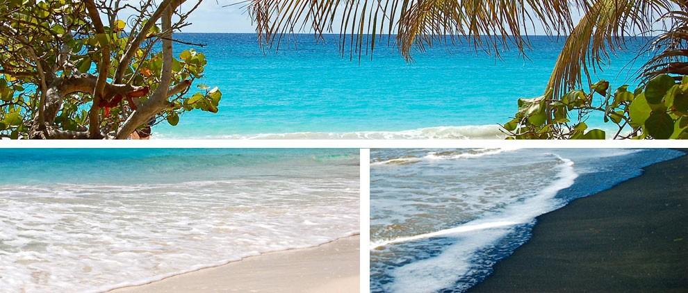 Explora las bellas playas de Isla de Vieques, Puerto Rico (Vieques island)