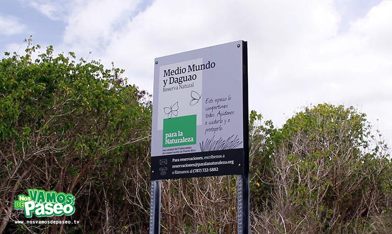 playa-medio-mundo-ceiba-puerto-rico-3