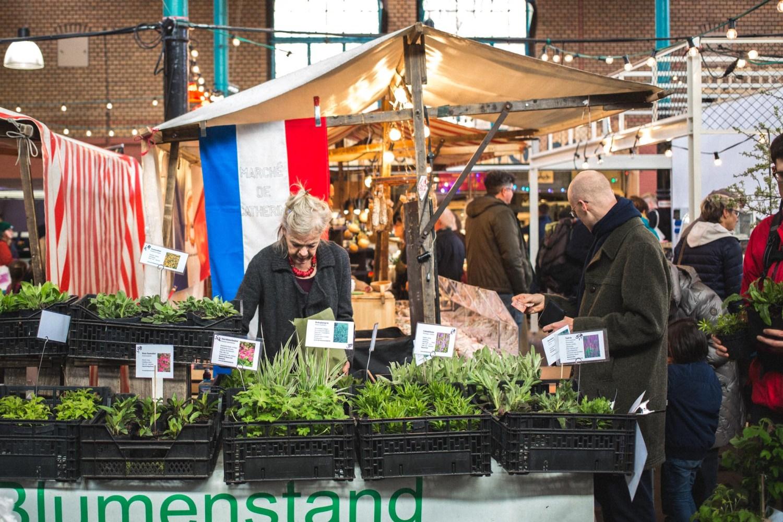viertelvor_pflanzenmarkt-14