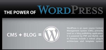 The power of WP 450x214 Sức mạnh của WordPress