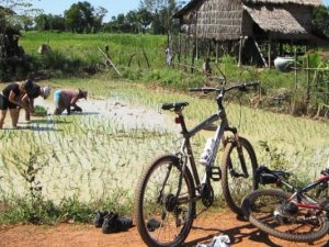 Cambodia Biking Tours: Mekong Cycling Tour For Landscapes