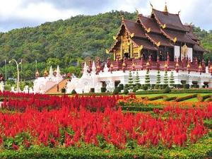Essenssial Chiang Mai family tour_Thailnd sightseeing tours
