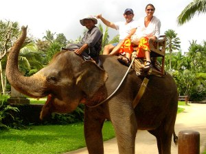 Experience of Chiang Mai tour_ Thailand sightseeing tours