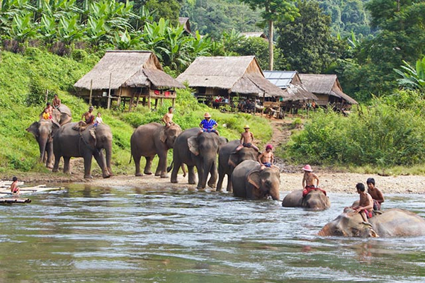 LUANG PRABANG ELEPHANT RIDING AND TREKKING TRIP