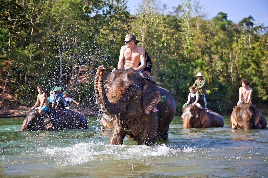 LUANG PRABANG TOUR OF LIVING WITH ELEPHANTS