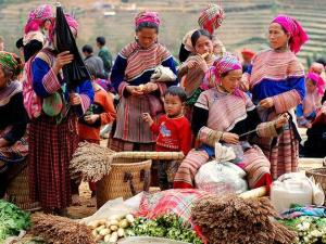 Hanoi Sapa Halong Bay Package Promotion Tour for 8 Days