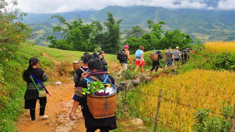 VIETNAM STUDY TOUR TO HANOI, SAPA, HALONG FOR 8 DAYS