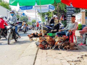 Vietnam_hochiminh_Dist8_Pham Hung St_2 (1)