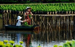The Mekong Delta 1 300x187 - THE MEKONG DELTA