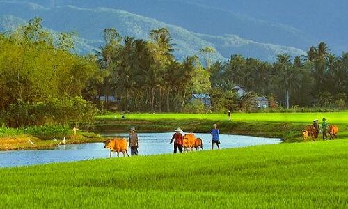 Fietstour Nha Trang - Vietnam
