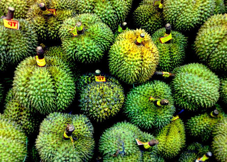 Дуриан - фрукт-вонючка