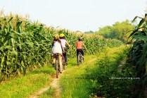 bike cycle mekong delta vietnam 2