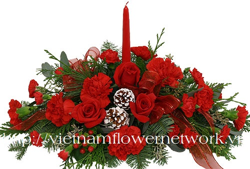 beautiful christmas flowers