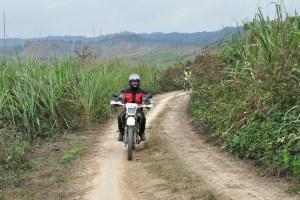 motorbike tours 300x200 - HANOI NORTHWEST MOTORBIKE TOUR TO SAPA VIA SON LA AND LAI CHAU