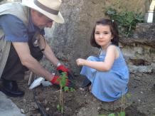 Jardinage intergénérationnel