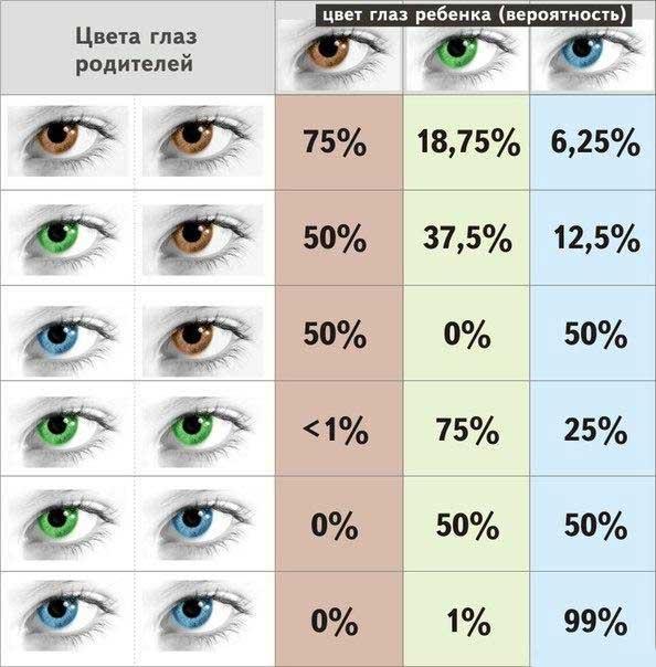 Quel oeil de couleur dans une table enfant