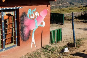 Phallus in Phunakha,read more http://io9.gizmodo.com/5906187/in-bhutan-friendly-phalluses-painted-on-houses-ward-off-evil-spirits-nsfw