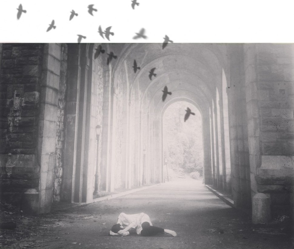 arches-and-birds-final-1024x868