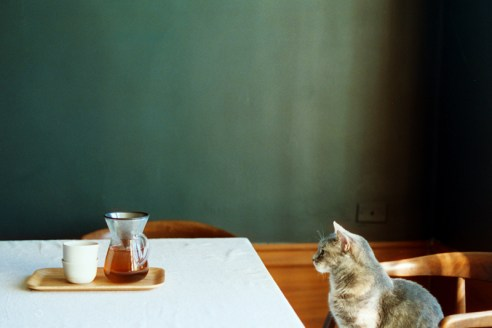 cindy loughridge - viewfinders