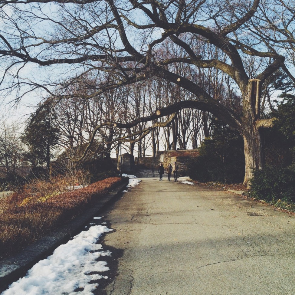 laminar_attachment path