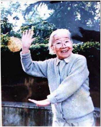 Wild Goose Qigong grandmaster Yang Meijun