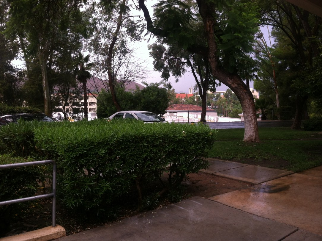 Summer hailstorm hits RCC (Photo by James H. Williams)
