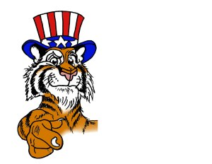 tiger pontingWEB