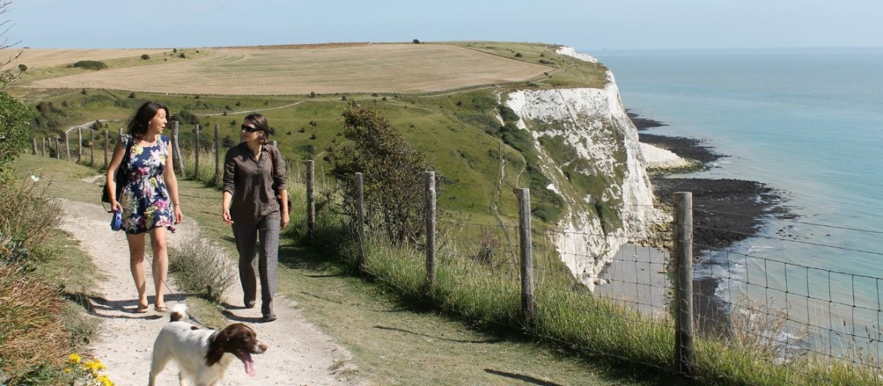 Top 5 dog walks in the UK