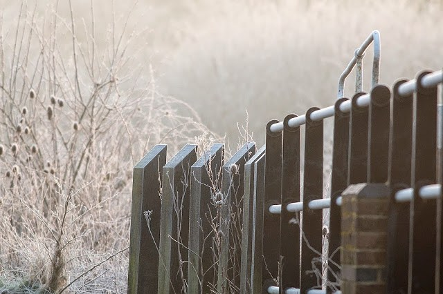Old Lock covered in Frost