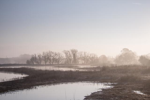 Light Misty Morning