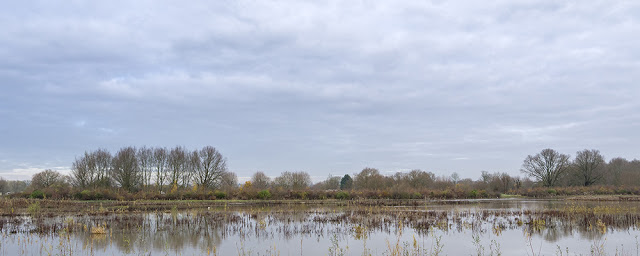 One last view of the reserve