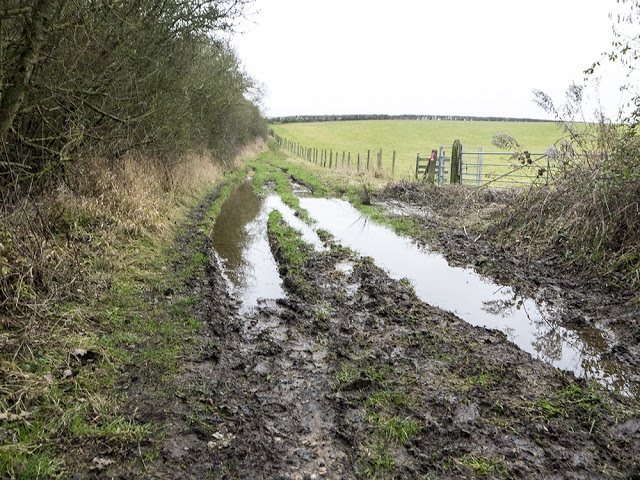 A Very Muddy Hill