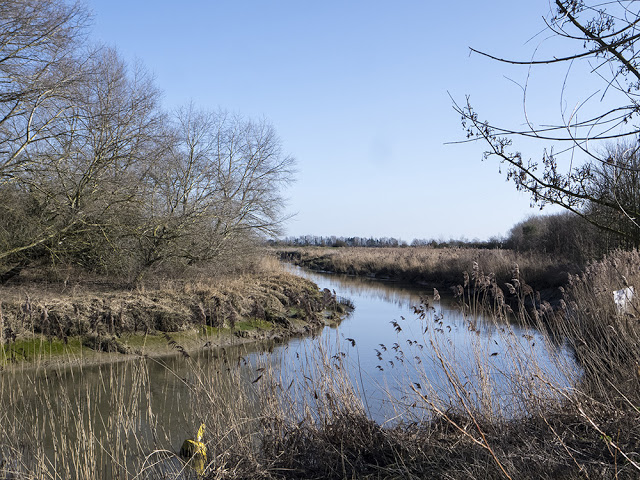 Bend in the River Stour